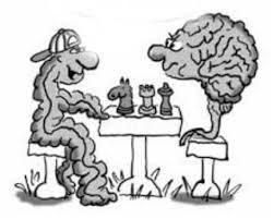 L'intestino o cervello enterico