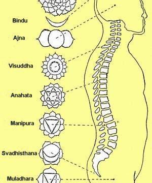La Schiena e la disarmonia dei Chakra