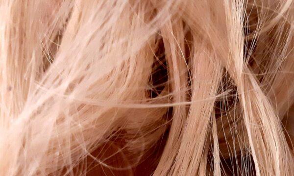 Autunno: cadono i capelli – Walter Pansini